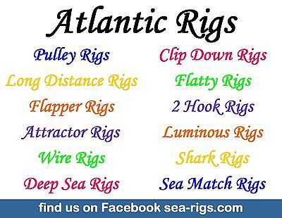 5 Flatty Sea Fishing Rigs Max Attract 2 Hook Flapper Flounder Dab Plaice Turbot