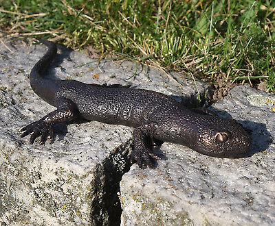 Bronzeskulptur Salamander Eidechse Dekoration für Haus und Garten