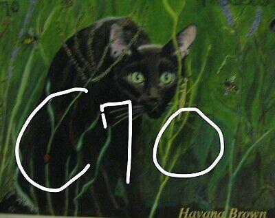 "C439        Original Acrylic Painting By Ljh    ""Vader""    Black Cat 5"