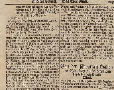 WAFFENSALBE Arzt + Apotheker MEDIZIN Orig Doppelblatt 1690 Heilkunde Rezept 4