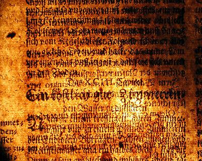 Gummi Mastix ÖL Apotheker Orig Textblatt um 1620  Medizin Arzt Balsam Rosenöl 3