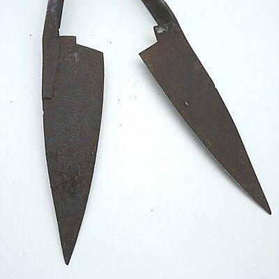 Antike Schere Schafschere Viehschere ca. 28 x 13 cm Gebrauchs und Rostspuren 4