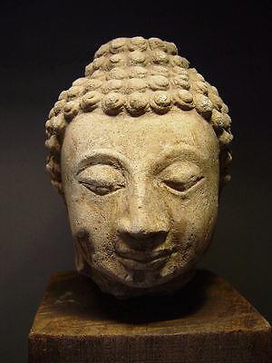 ANTIQUE AYUTTHAYA PERIOD STUCCO BUDDHA HEAD, 14-16th C. MUSEUM QUALITY 2