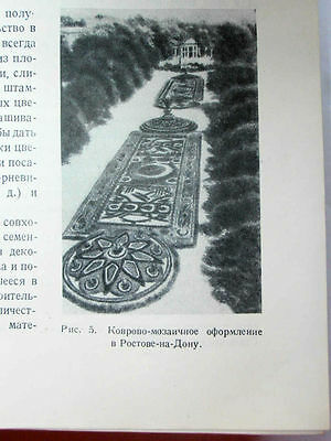 1949 USSR Russia Soviet FLORICULTURE  LANDSCAPE DESIGN Manual Book STALIN EPOCH 7