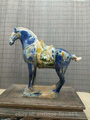 Collect Chinese Ceramics Tri-Color Glazed Pottery Tang Dynasty War-horse Statue 5