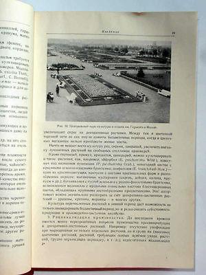 1949 USSR Russia Soviet FLORICULTURE  LANDSCAPE DESIGN Manual Book STALIN EPOCH 11