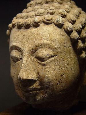 ANTIQUE AYUTTHAYA PERIOD STUCCO BUDDHA HEAD, 14-16th C. MUSEUM QUALITY 3
