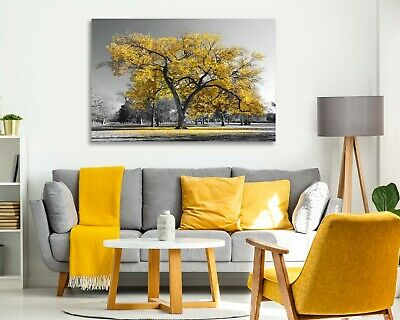 Large Tree Yellow Leaves Black White Canvas Wall Art Picture Print 30mm Deep 2