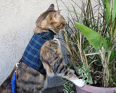 Mynwood Cat Walking Jacket Harness Vest Holster 3