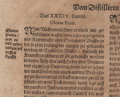 Gummi Mastix ÖL Apotheker Orig Textblatt um 1620  Medizin Arzt Balsam Rosenöl 7
