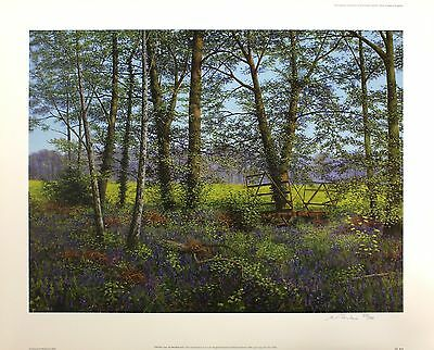 "BILL MAKINSON ""Old Hay Cart"" woodland meadow SIGNED! SIZE:56cm x 70cm NEW RARE 2"