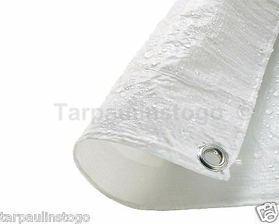 19 Sizes Waterproof Tarpaulin Ground Sheet Lightweight Camping Cover Tarp New 6