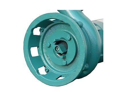 SCHNEIDWERK SCHMUTZWASSERPUMPE 2 Storz C 20m Schlauch Pumpe F/ÄKALIENPUMPE mit Bauschlauch Tauchpumpe 1500W IBO 1,5 kW mit Zerkleinerer Wasserpumpe