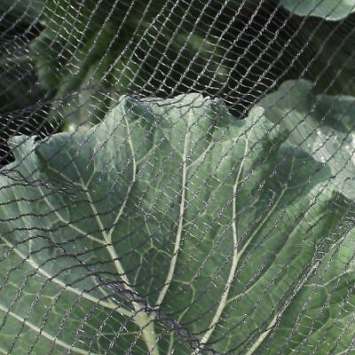 Soft Butterfly Protection Netting Crop Veg Garden Anti Bird Multiple Sizes 3