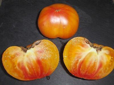 30 graines Tomate ANANAS BIO 2