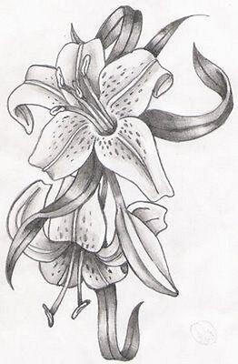 Tattoovorlagen Blumen Flower Motive Flash Book Dvd Motive Tattoobuch