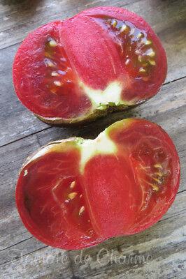 10 graines de tomate RUSSIAN COSSACK unique très rare heirloom tomato méth.bio 10
