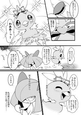 Doujinshi POKEMON GARDEVOIR X Blaziken SANGRIA BLIND furry kemono A5 28pages