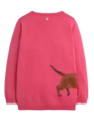 Joules Girls Meryl Intarsia Jumper - Ages 5 - 12 - Colours Deep Pink - Dalmation 2