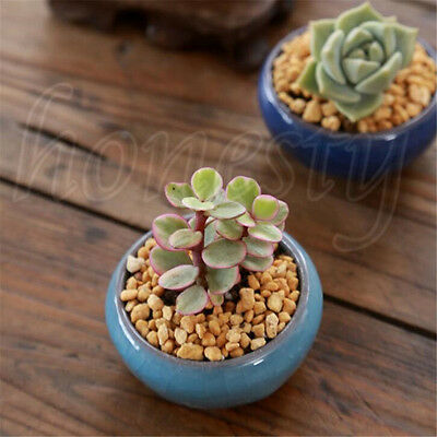 Ice-Crack Glaze Flower Ceramics Succulent Plant Mini Pot Garden Flowerpot Decor 4