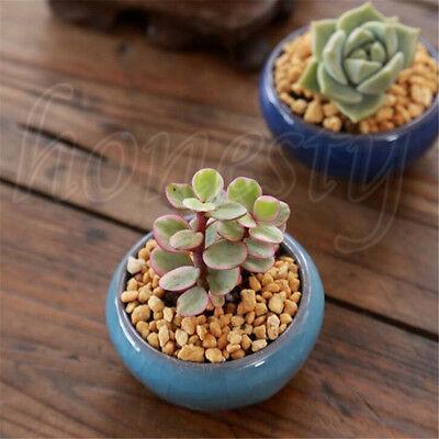 NEWEST Ice-Crack Glaze Flower Ceramics Succulent Plant Mini Pot Garden Flowerpot 10