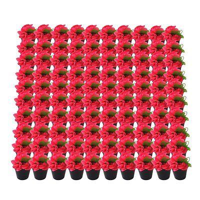"""100pcs Plastic Vegetable/Flower Nursery Plant Pots Home Garden Black W3.9""""xH3.9"""""""