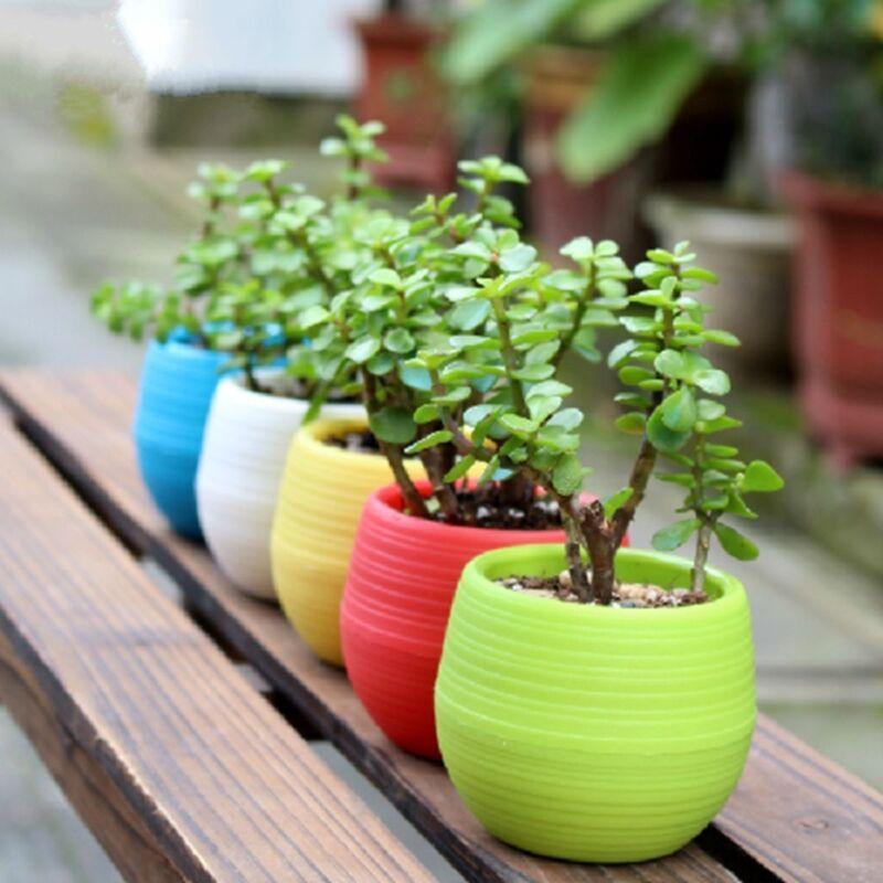 Cute Mini Plastic Flower Pot Succulent Plant Flowerpot Fr Home Office Room Decor 4