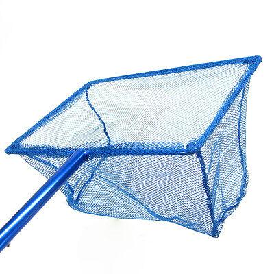 "12""x 8"" Koi Fish réglable Poignée net 30 ~ 54cm aluminium étang de pêche bleu 5"