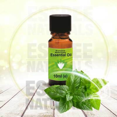 Peppermint Essential Oil 10ml - 100% Pure - For Aromatherapy & Home Fragrance 2