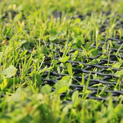 Rasengitter Rasenschutzgitter Gartenweg Schutzgitter HaGa® 25m L x 1,3m Breite 3