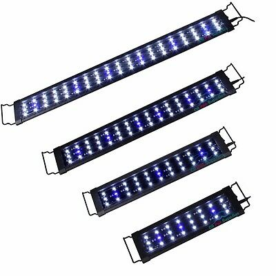 LED Aquarium Light 0.5W Plant Marine FOWLR Blue & White 3