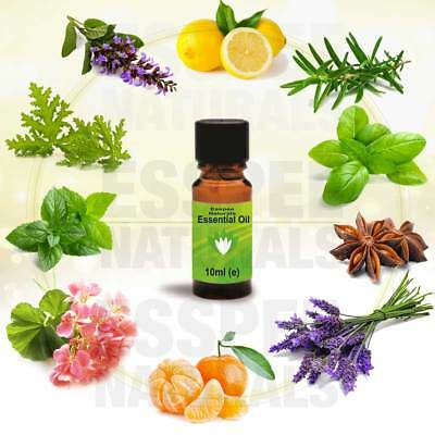 Lavender Essential Oil 10ml - 100% Pure - For Aromatherapy & Home Fragrance 2