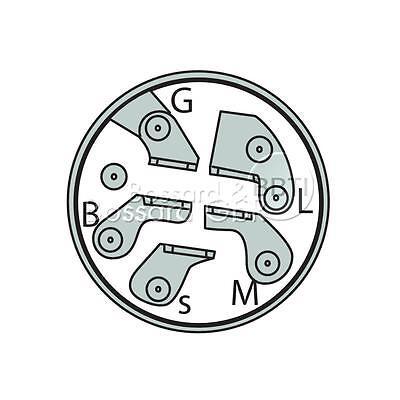 Schlüssel passend für CastelGarden TwinCut Honda Brill 18450065 //1 Zündschloss