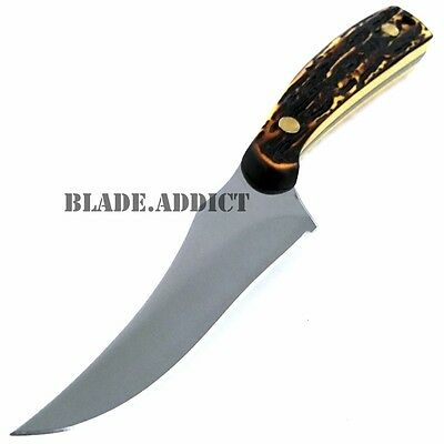 """7"""" STAG TACTICAL SURVIVAL Skinning KNIFE Hunting Skinner Camping Fixed Blade 2"""