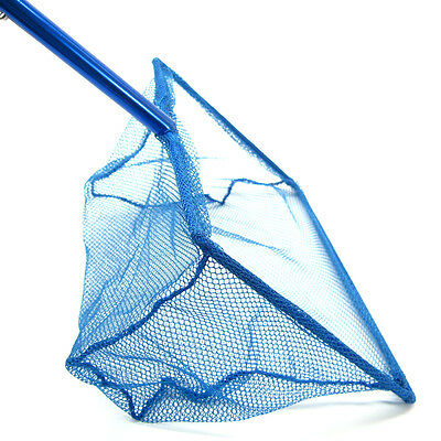 "12""x 8"" Koi Fish réglable Poignée net 30 ~ 54cm aluminium étang de pêche bleu 2"