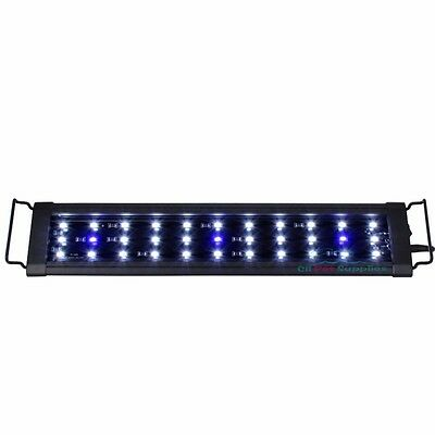 LED Aquarium Light 0.5W Plant Marine FOWLR Blue & White 6