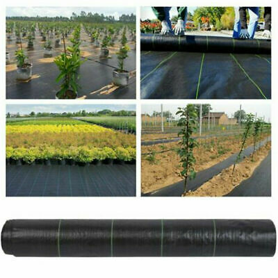 Heavy Duty Fabric Weed Control Membrane Garden Ground Cover Mat Landscape Sheet 3
