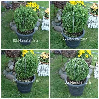 Topiary Formschnitt-Schablone Kugel 50cm Buchsbaum buxus