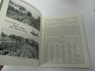 DANKER Florist, Albany,NY 1927 Illustrated Garden Catalog of Trees, Flowers etc.