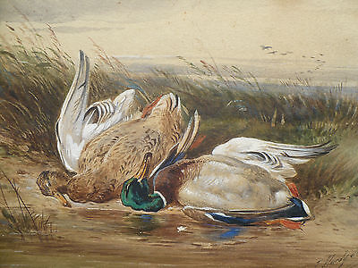 Antique Fine Art Sporting Watercolor Painting James Hardy Junior Hunting Scene 3