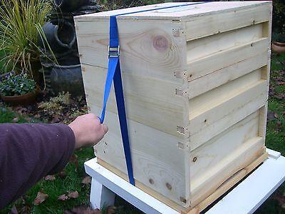 10 Hive straps 2