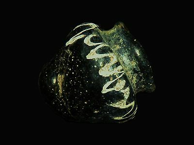 Aphrodite- Ancient Eastern Mediterranean Rod Formed Glass Jar