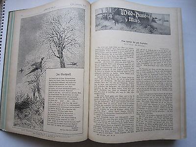 """""""Wild und Hund""""  25. Jahrgang Januar - Dezember 1919, Hege,Pirsch 2"""