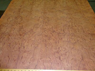 """Bubinga Figured Kewazinga wood veneer 48/"""" x 48/"""" on polyester paper backer A"""