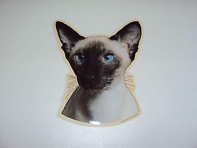 Aufkleber Siam-Katze - Autoaufkleber verschiedene Varianten 2