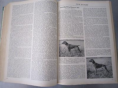 """""""Wild und Hund"""" kompletter 60. Jahrgang von April 1957 - März 1958,Hege,Pirsch 7"""