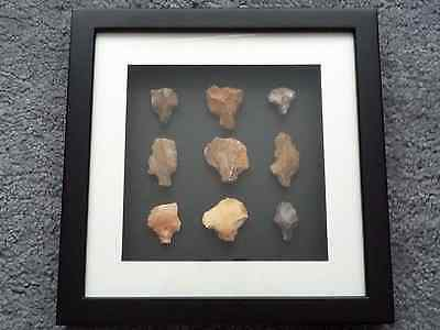 Paleolithic Arrowheads in 3D Picture Frame, Authentic Artifacts 70,000BC (O009) 3