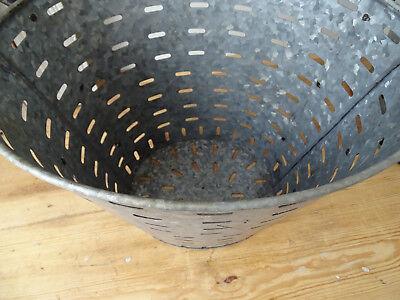 OB005 Large Oliveneimer ~Iron ~Olivenkorb ~ Olive Bucket Washtub Oval 6