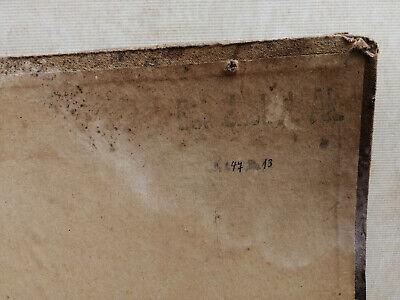 Alte Schulwandtafel Botanik C.I. L. Kny Lithografie auf Karton 9