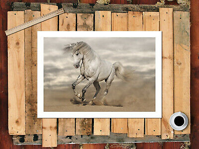 Single Bedside Abstract Horse Racing 7 Running White Horses Canvas Picture Print